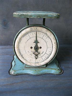 Antique Scale PELOUZE Kitchen Family, Old Orig Blue Paint, 24 Lbs, Chicago, IL
