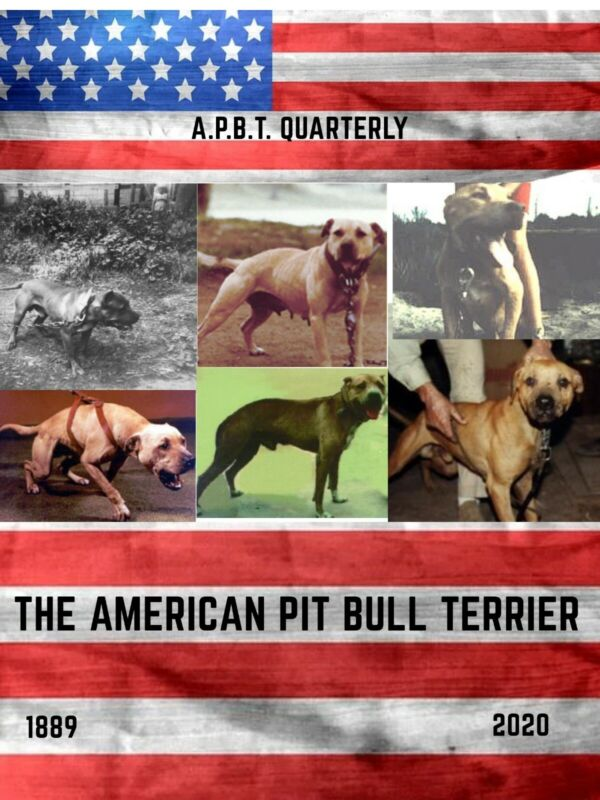 My Advertising Book For The American Pit Bull Terrier APBT QUARTERLY