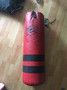 40 Lb boxing bag