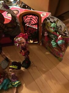 Ever after high doll and house
