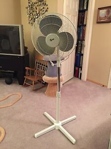Standing oscillating fan for sale