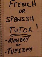 French or Spanish tutor