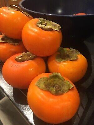 Fresh Organic Fuyu Persimmon Fruits 6 LBS