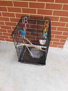 Large Bird Cage Gawler South Gawler Area Preview