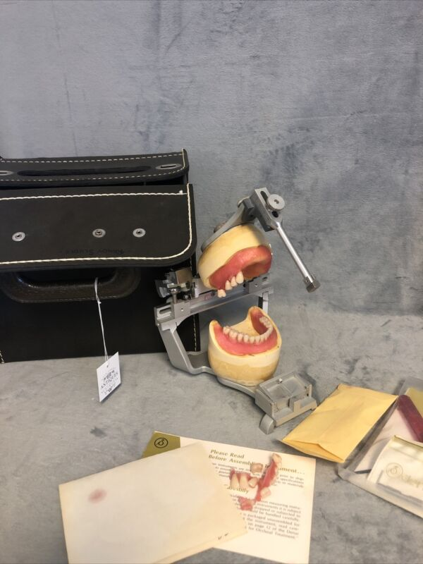 Vintage Dental Anatomical Plastic Wax Model Mounted With Original Case & Tools