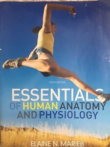 Essentials Human anatomy and physiology 10 Th edition