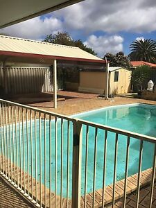 House mate wanted Beechboro Swan Area Preview