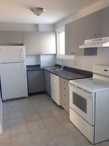 Newly Renovated 3bdrm Townhome Kingston West End