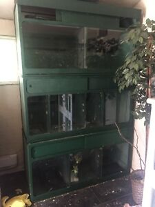 Reptile display cage