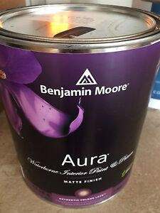 Benjamin Moore Quality Paint & Primer Paint ($160)