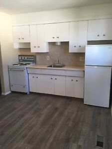 Spacious 2 bedroom,available in Delton area,$925,DD$800