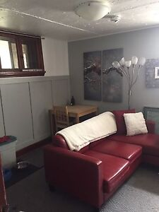 PRIVATE Caswell 1 bedroom +lvngrm, furnished +air security