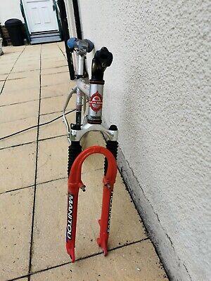 Marlin palliside trial bike