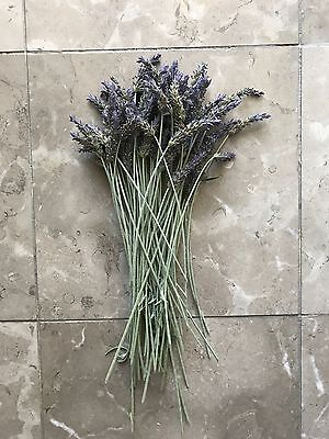 12in Long Stem Organic USA Natural Air Dried California Lavender Flower Bunches