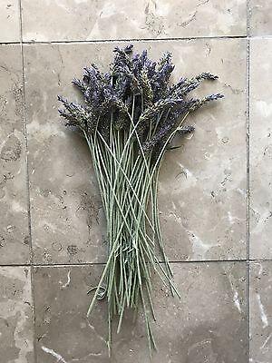 12in Long Stem Organic Natural Air Dried California Lavender Flower Bunches