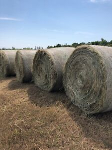 Hay/Straw Wanted