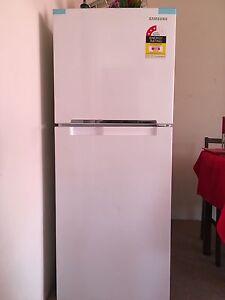 Samsung 228L Refrigerator Ashfield Ashfield Area Preview