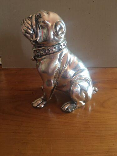 Bouledogue anglais - english bulldog