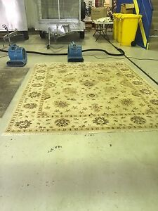 Prestige Rug Cleaning Solutions & Cheap Carpet Cleaning Specialist Robina Gold Coast South Preview