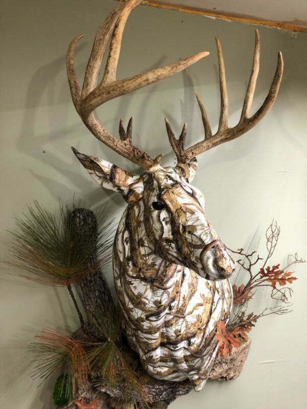 Hydro dipped whitetail deer shoulder mount wall decor camp or cabin