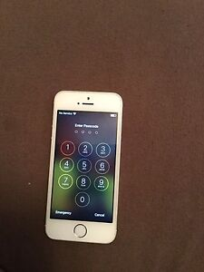 iPhone 5s White/Silver (16gb)