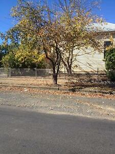 Leaves Leaf Raking Autumn clean up Macedon Ranges Kyneton Macedon Ranges Preview