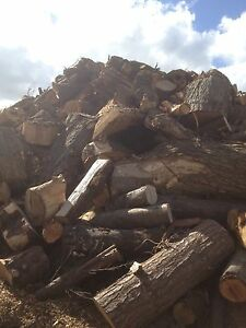 firewood logs timber uncut,free local delivery