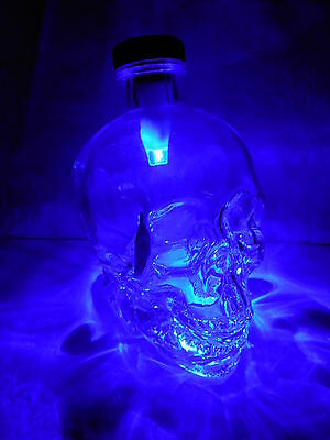 Dan Aykroyd Crystal Head Vodka Skull Potion Refill Bottle 750ml W/ USB LED - Dan Aykroyd Halloween
