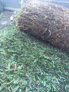 10 rolls of buffalo roll on lawn Noranda Bayswater Area Preview