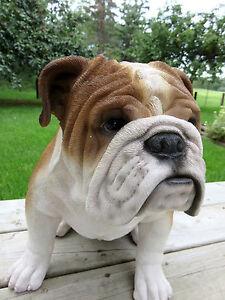 Bulldog Statue | Wayfair