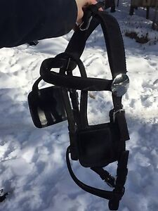 Brand new Ideal Harness