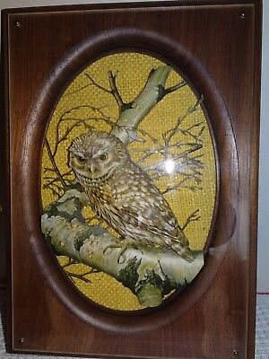 VINTAGE OWL ON BRANCH 3 DIMENSIONAL PICTURE SIGNED CHERYL SHADOW BOX