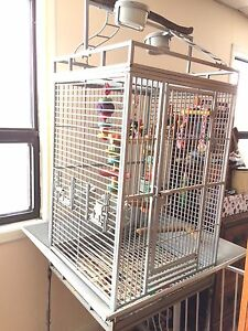 Parrot cage with play top