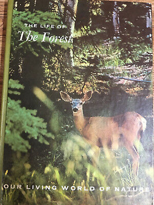 Our Living World of Nature Series - The Forest