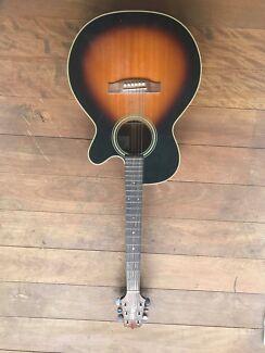 TAKAMINE D-Series Acoustic Guitar