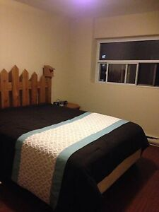 Pet friendly fully furnished room
