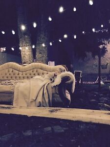 Antique sofa perfect for photo shoots
