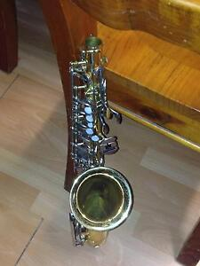 alto saxophone Jacobs Well Gold Coast North Preview