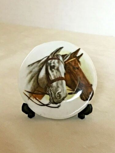 HORSES HEADS (Brown and White) IMAGES ON A SMALL BONE CHINA PLATE  🙏🏻👀@my oth