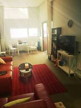 Large, quiet & fully Furnished Room in FREE TRAM ZONE Docklands Melbourne City Preview