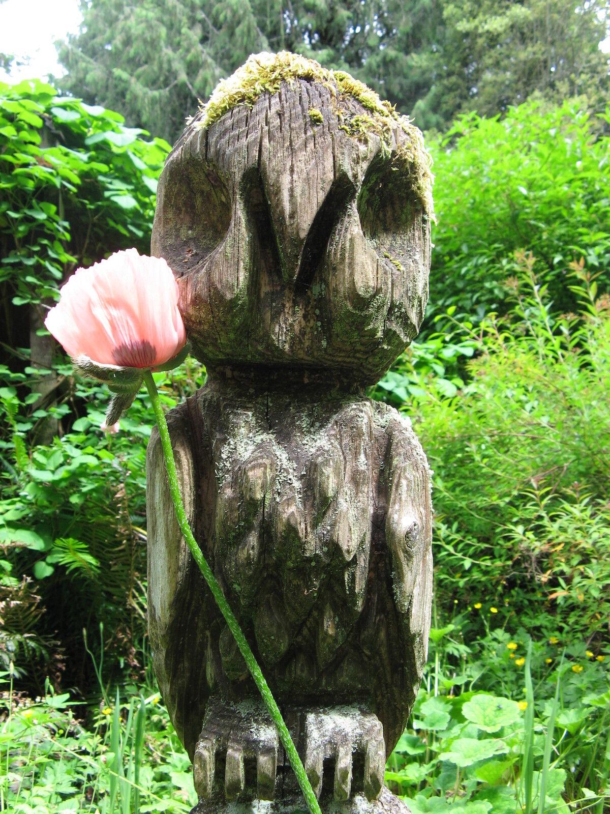 wild*garden*Antiques*primitives