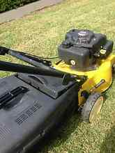 Lawn Mower 4 Stroke Victoria Point Redland Area Preview