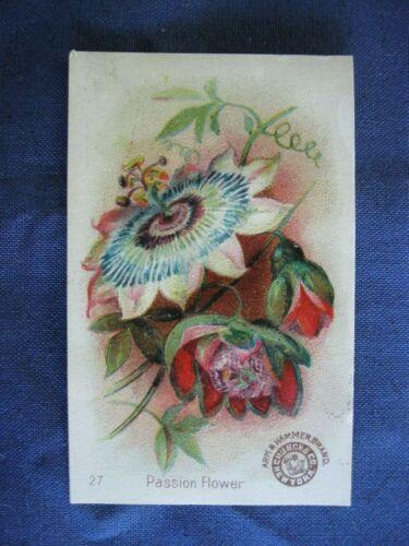 Victorian Trade Card PRETTY Church Arm & Hammer Brand Soda #27 Passion Flower 4A