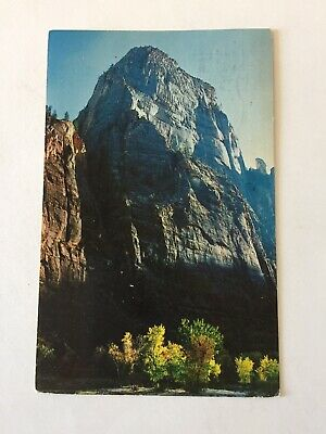 Virgin River Zion National Park (The Great White Throne Virgin River Zion National Park UtahPosted 1973 Postcard )