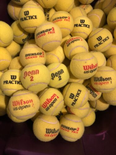 Lot of (20) Clean Mixed Tennis Balls Wilson Penn Dunlop Dog Toy Free Shipping