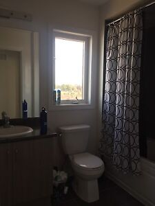1 room for rent house shared amenities  Cambridge Kitchener Area image 3