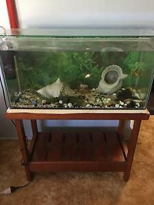 3 ft Fish Tank with Wooden Stand Yamanto Ipswich City Preview