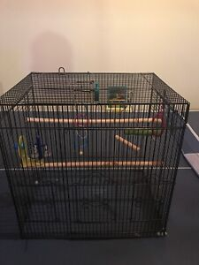 Bird cage and toys for sale