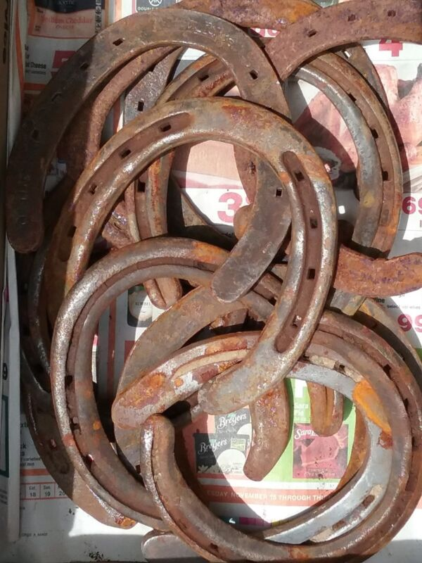4 horseshoes used from Montana Ranches