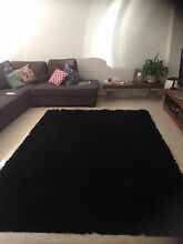 Large Black rug West Footscray Maribyrnong Area Preview